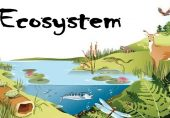 Conserving the Ecosystems of Pakistan
